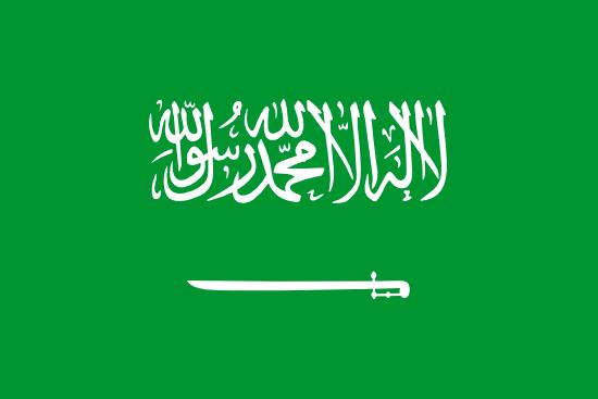 Suudi Arabistan Vizesi